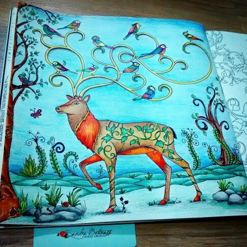 17 Best Images About Livro De Pintar On Pinterest