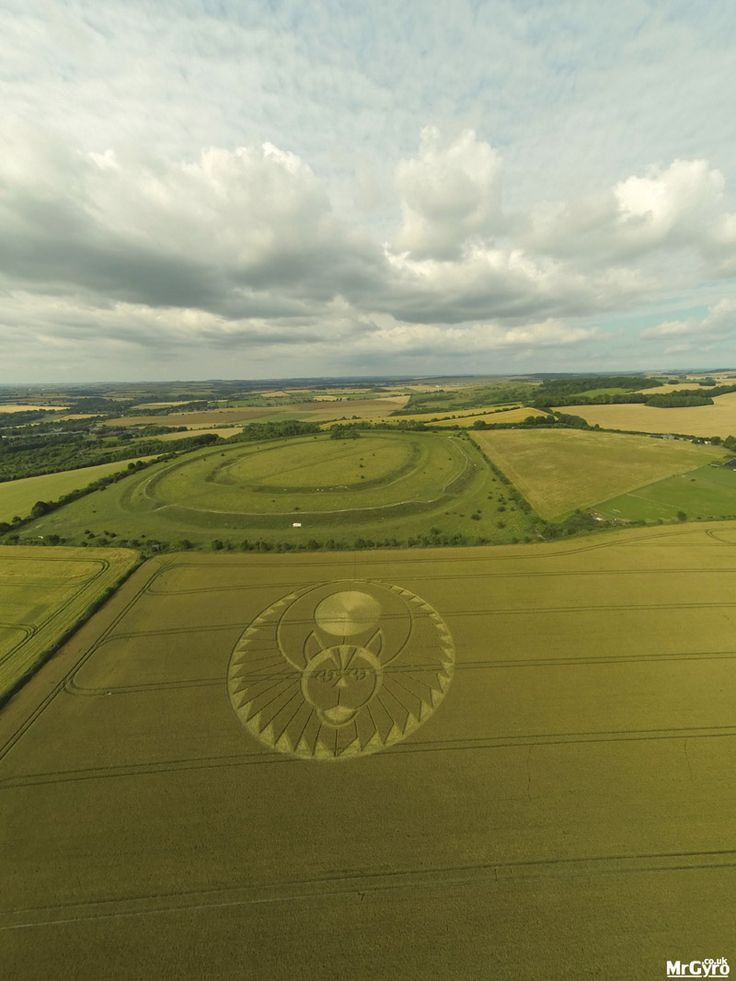 2016 and yet more fabulous formations - Crop Circle at Figsbury Ring, Firsdown, Wiltshire. Reported 22nd July 2016 Stay Avalon Lodge B&B