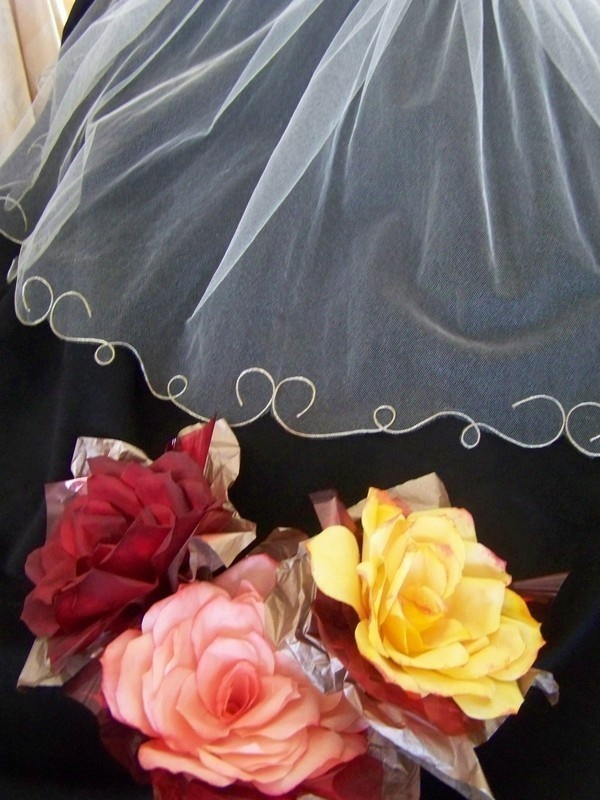 Swirl Edged Wedding Veil