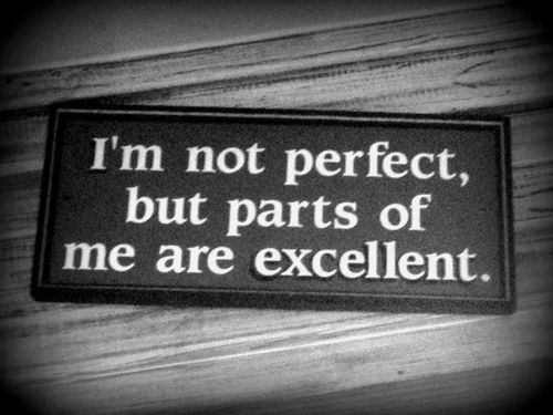 I'm not PERFECT, but parts of me are EXCELLENT. Perfect!
