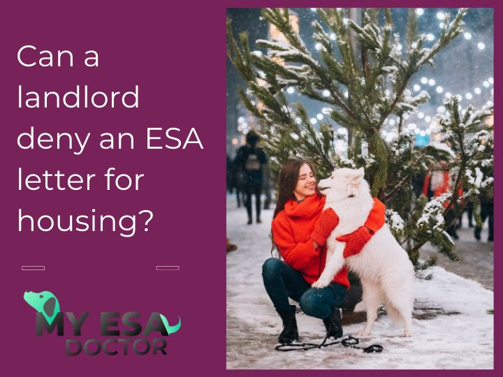 21++ How to give your landlord an esa letter ideas in 2021