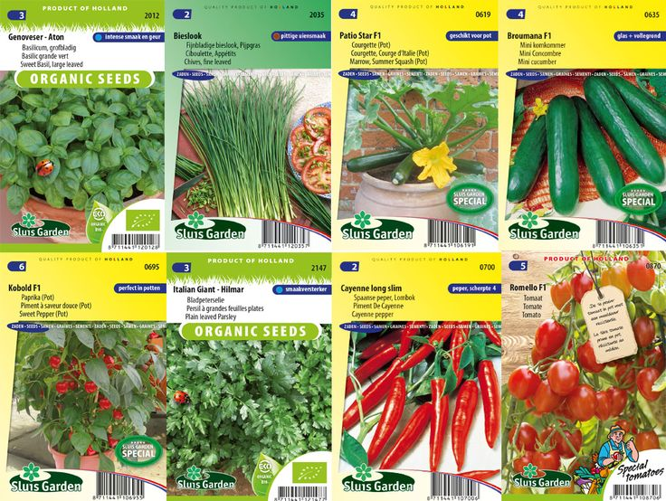 Meer dan 1000 idee n over klein terras op pinterest klein terras decoreren idee n voor patio - Groenten in potten op balkons ...