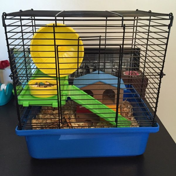 For Sale: Hamster Cage And Supplies for $45