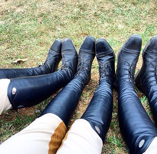 equestrian boots zipper field from   Dover Saddlery   AKA #equestrians are the best.