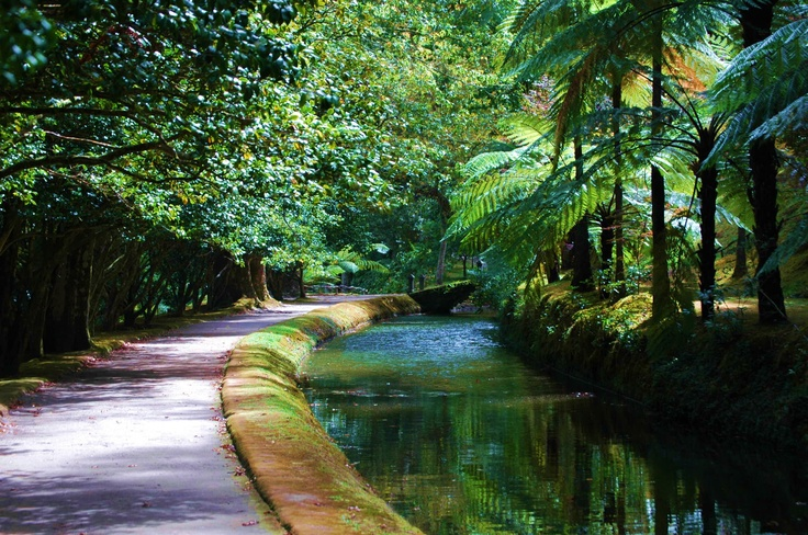 The Way at Terra Nostra Park - an Azores.com picture
