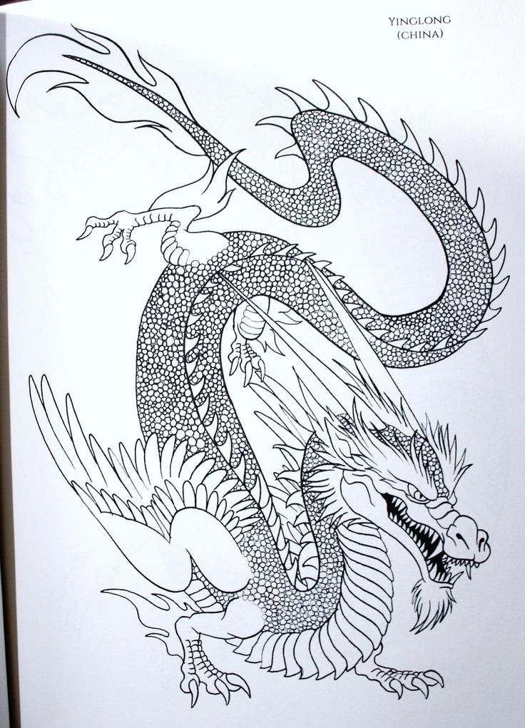 Amazon The Book Of 100 Dragons LEVEL 2 A Fantasy Themed