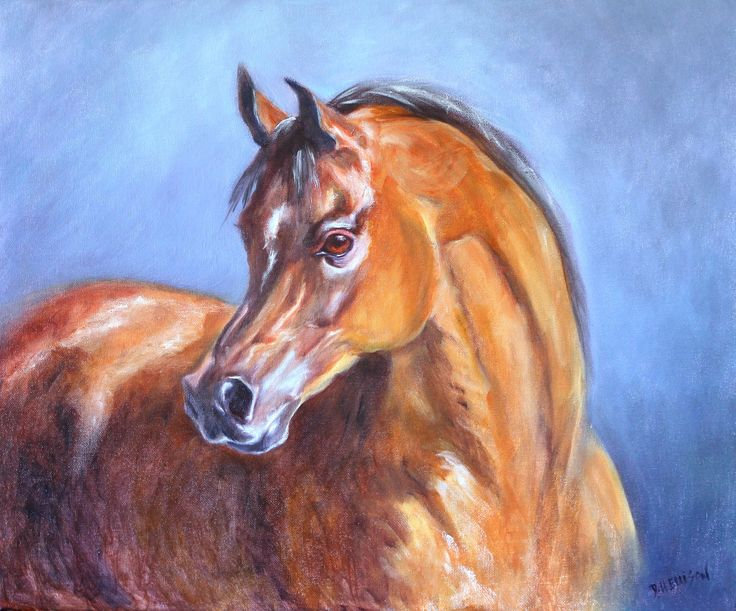 Chestnut Arab oil by Denise Ellison 5th March 2016