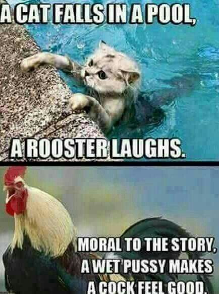 Dirty sex memes funny