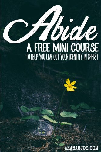 Understanding our identity in Christ is foundational to successfully living the Christian life. Sign up for this free e-course and learn how to abide in Christ plus get tools for letting the word of Christ richly dwell in your heart and mind (Colossians 3:16). This course is geared for you to experience ongoing life transformation!