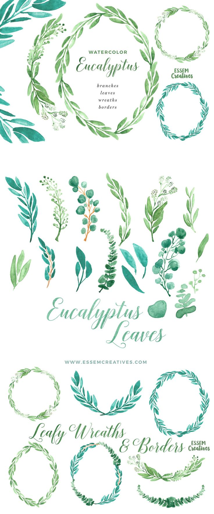 Watercolor Eucalyptus Clipart, Eucalyptus Wreaths Borders and Frames This is a set of hand painted Watercolor Eucalyptus Clipart featuring branches, wreaths, borders and frames. Eucalyptus is a super modern and trendy concept which are perfect for wedding invitations & save the date designs. Also perfect for logos & branding projects.  This set includes, delicate, modern looking eucalyptus leaf graphics in stunning vibrant shades painted in a delicate, painterly style. Click to see more>>