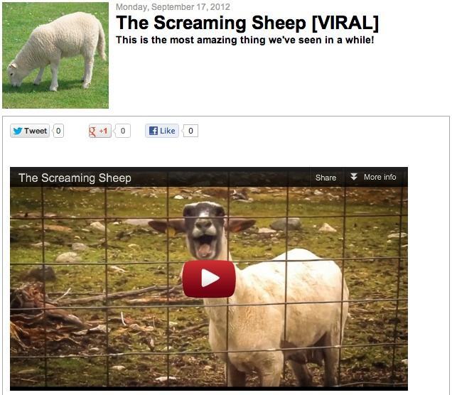 [VIRAL VIDEO] The screaming sheep!: Marketing Fun, Kinder Art, Art Videos, Hard Pinners, Hard, Videos Pinners, Bubliv Dpowersworld, Marketing Review, Fun Tools