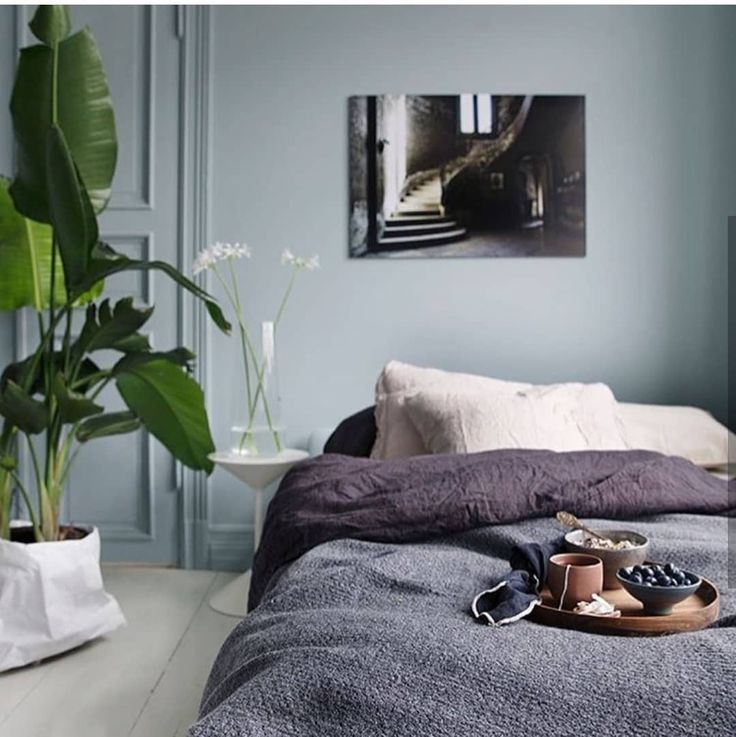 Gorgeous room by @tonekrok. Polar Blue in Classico chalk paint on the wall.   #pureandoriginal #natural #paint #chalkpaint #interiors #interiordesign #blue #polarblue #nontoxic #safepaint #bedroom #sundaymorning #classico #interior123 #naturally