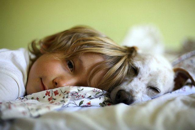 Come pulire e deodorare il cane in modo naturale con il bicarbonato.
