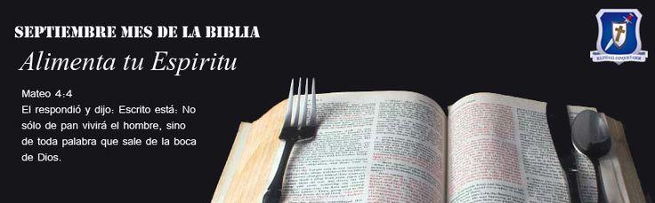 alimenta tu espiritu
