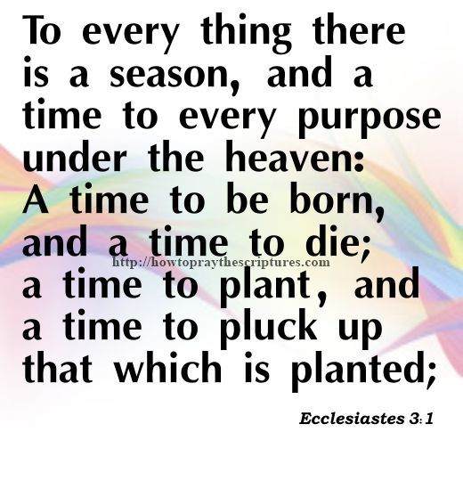 Best 25 grief scripture ideas on pinterest bible verses about to every thing there is a season ecclesiastes and a time to every purpose under the heaven a time to be born and a time to die a time to plant fandeluxe PDF