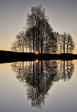 gbirlik:    Perfect Reflection (by Mixmaster)