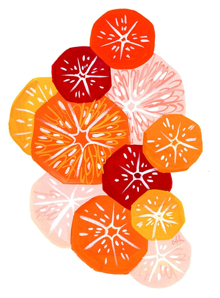 Simple Citrus Salad illustration by Ann Shen for Freutcake- recipe included too!