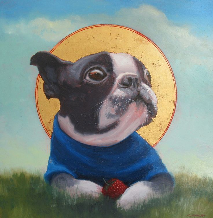 "Gordon MacDonald ""Saint Poopee, Patron Saint of Strawberries"" 10"" x 10"" $825 now at Argyle Fine Art! #bostonterrier"