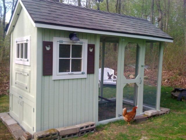 53 best chicken and duck pens images on pinterest for Chicken and duck coop