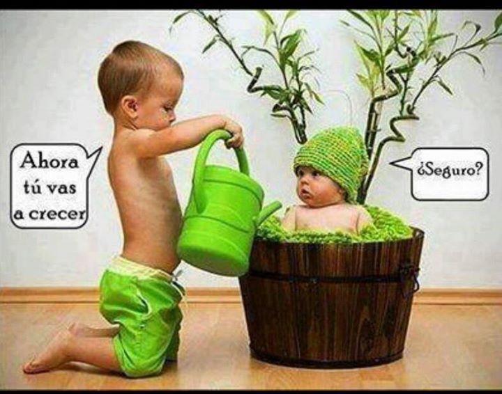 El Jardinero!!!