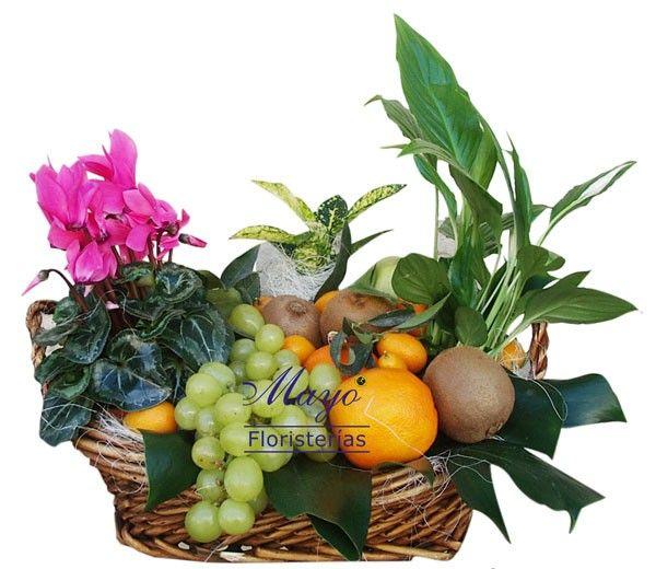 Espectacular cesta de frutas con plantas variadas. ¡Un regalo de lujo!