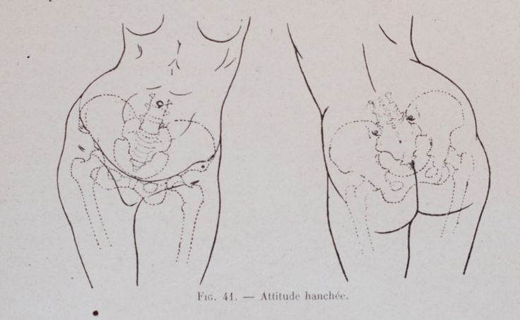 Excerpts from Female Anatomy, by Dr. Paul Richer » scott-eaton.com