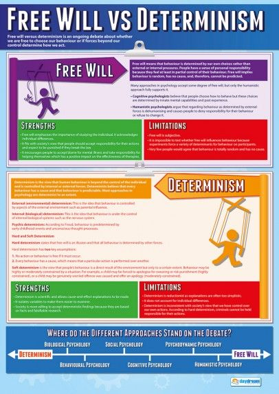 Free Will vs Determinism Psychology Poster