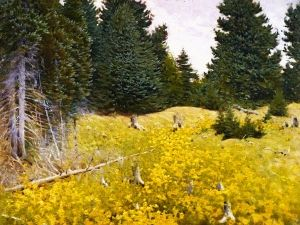 Field of Wildflowers - Frank Vincent DuMond - The Athenaeum