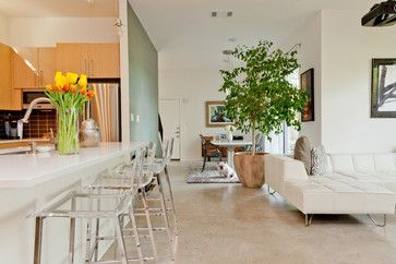 My Houzz: Modern Home contemporary living room
