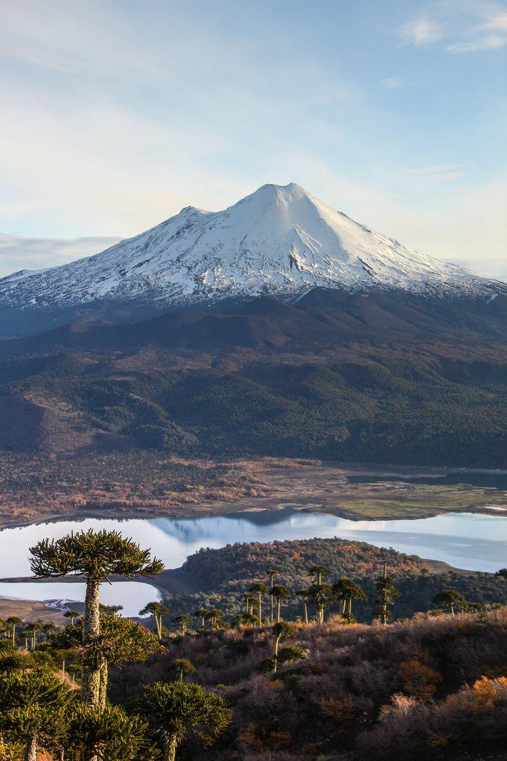 Atardecer en PN Conguillio. Chile