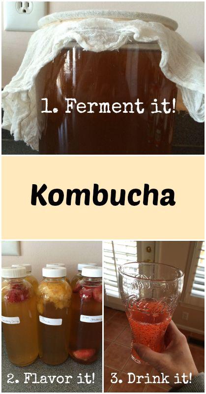 Adventures in Fermentation: Kombucha - Gutsy By Nature