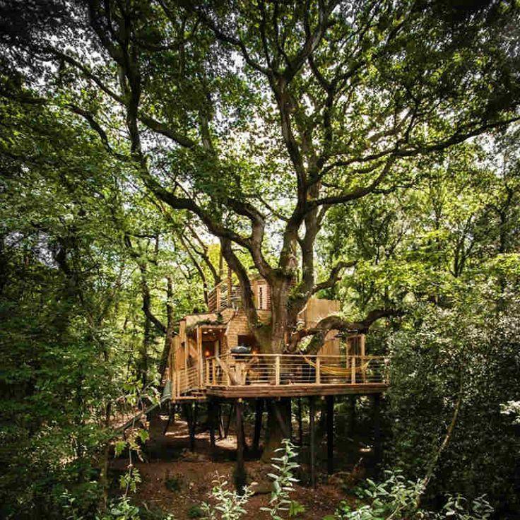 15 δεντρόσπιτα για να ζήσεις για πάντα στο δάσος!  #design #αρχιτεκτονική #δασος #δενδροσπιτο #δεντροσπιτα #δεντροσπιτο #έμπνευση #κατασκευες #μικροσπιτι #μοντέρνο #ξυλο #σπιτι #σπιτισεδεντρα