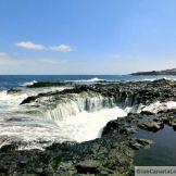 Bufaero en #LaGarita, #Telde #GranCanaria #IslasCanarias