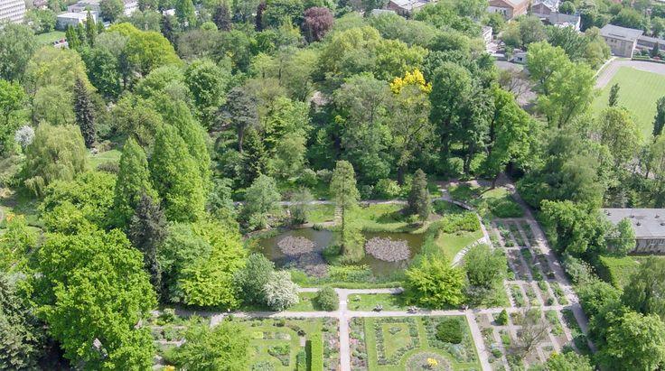 Ogród botaniczny z lotu ptaka [ZDJĘCIA Z DRONA] - Zdjęcie 57337 - LoveKraków.pl