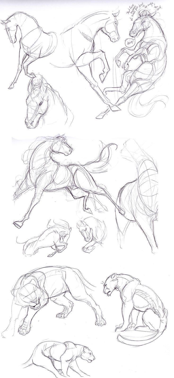 How to draw horses Horses. Pony. Draw. Sketch. art.