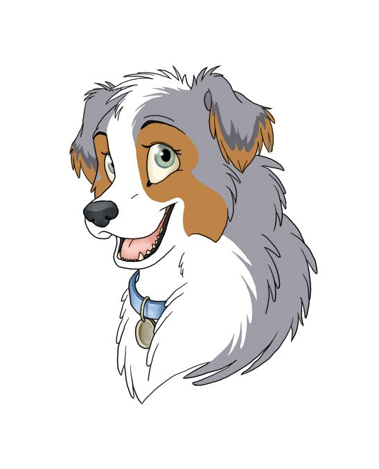 australian shepherd drawing - Google Search