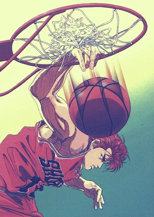 slam dunk and hanamichi image