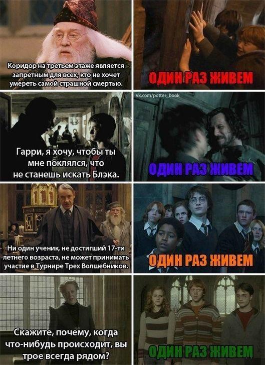 Картинки приколы с надписями гарри поттер, томском