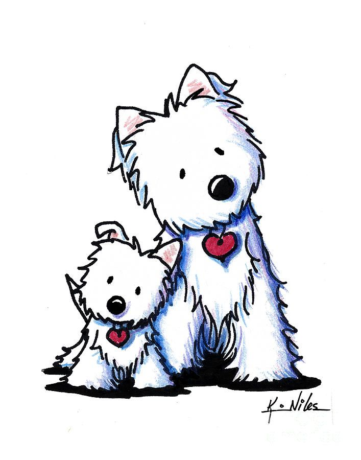 636 best images about west highland terrier on pinterest for Westie coloring pages