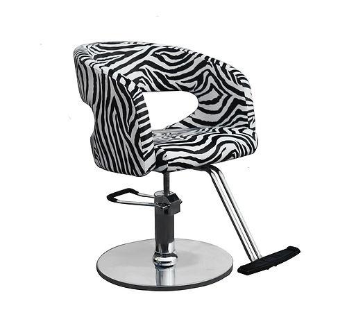 Zebra Black & White Salon Styling Chair Hair Equipment Furniture Hydraulic Pump | eBay