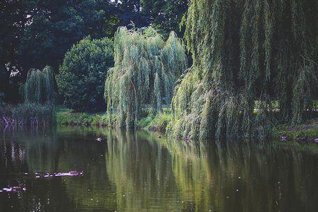 Jak wybrać idealne miejsce na Twoją wyjątkową sesję zdjęciową? || Profesjonalna sesja zdjęciowa Warszawa