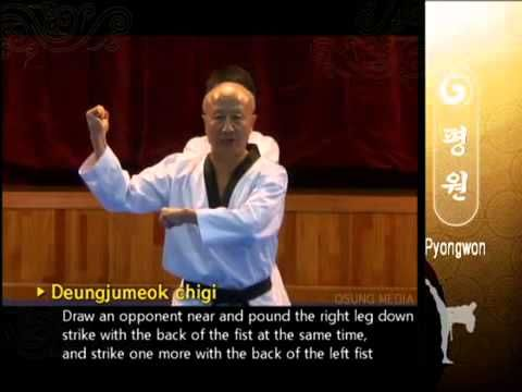 Poomsae Pyongwon -  WTF - Grand Master Kyu Hyung Lee (+playlist)