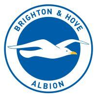 Google Image Result for http://upload.wikimedia.org/wikipedia/en/thumb/f/fd/Brighton_%2526_Hove_Albion_logo.svg/200px-Brighton_%2526_Hove_Albion_logo.svg.png