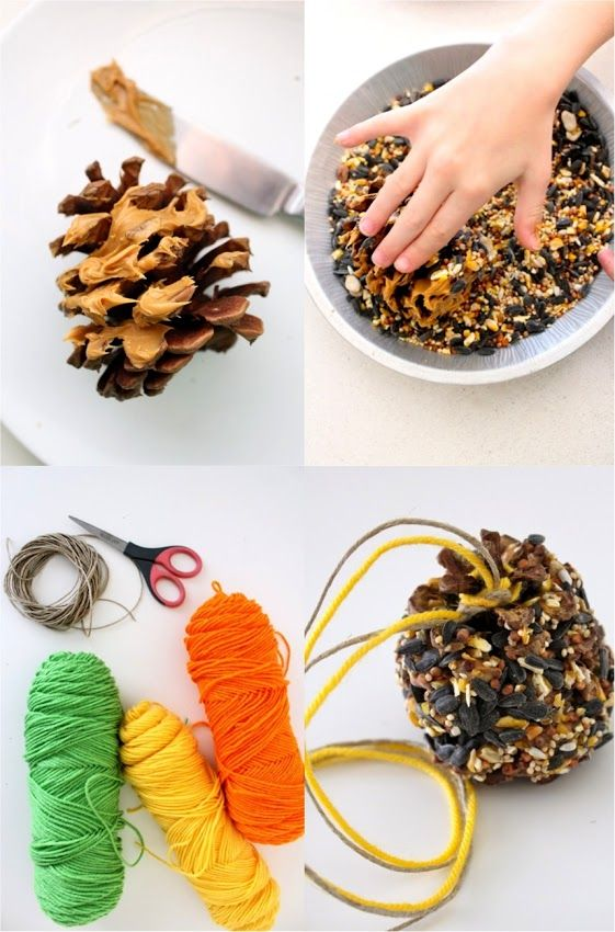 5 Minute Bird Feeders   Pine cones, peanut butter and bird sead. Wonderful idea to do with kids.