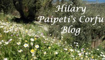 Hilary's Blog 19-12-2014