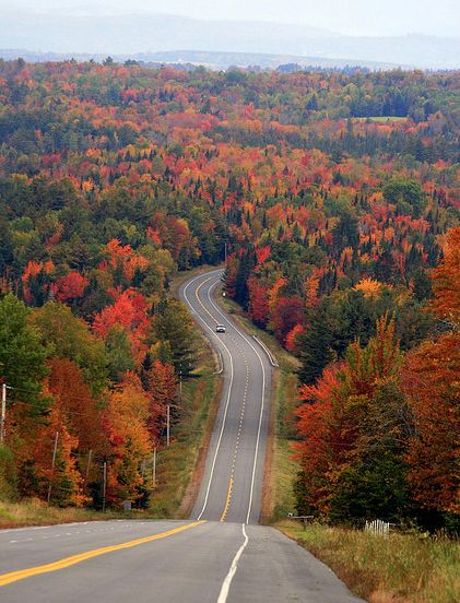 Visit the spectacular foliage of Maine's largest lake, Moosehead.