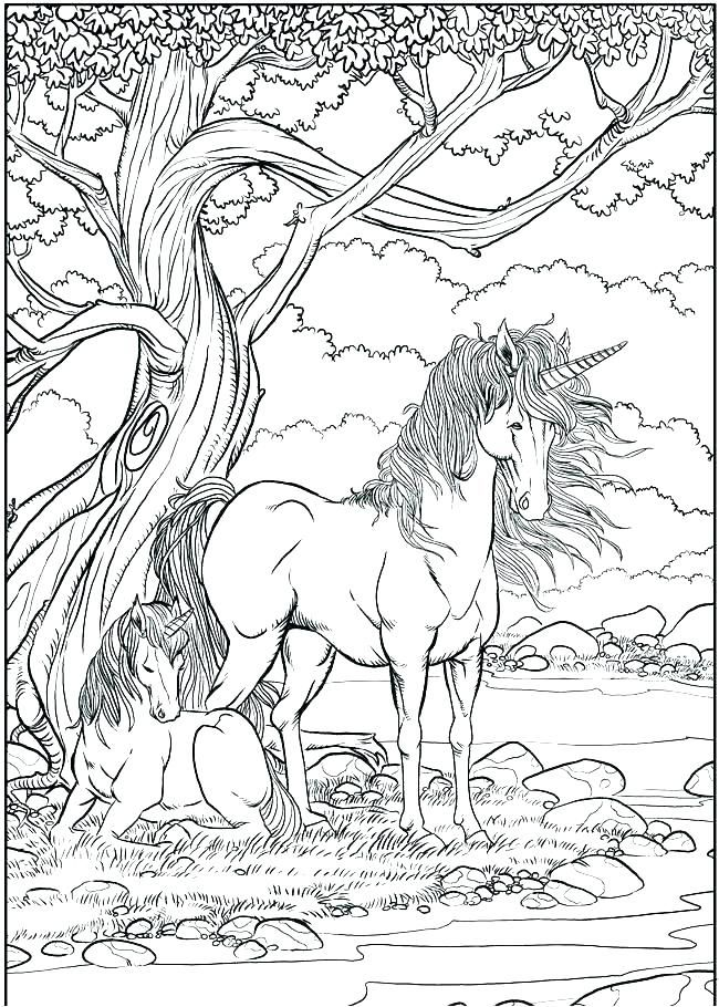 Unicorn Coloring Pages For Adults Best Coloring Pages For Kids Unicorn Coloring Pages Animal Coloring Pages Designs Coloring Books