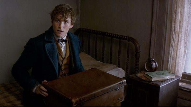 """Fantastic Beasts and Where to Find Them - Announcement Trailer [HD]   Primer trailer de """"Animales fantásticos y dónde encontrarlos"""", el spinoff de Harry Potter"""
