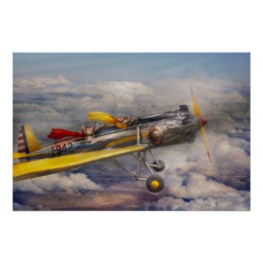 Vliegend Varken - Vliegtuig - de vreugderit Plaat