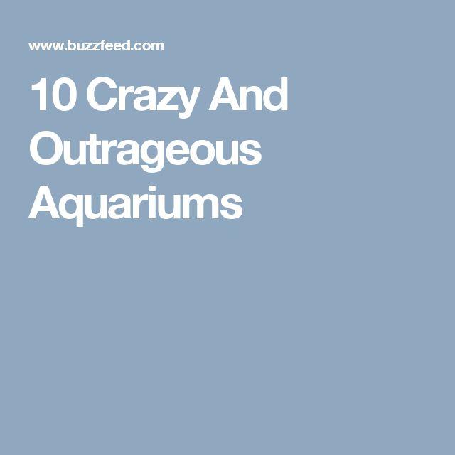 10 Crazy And Outrageous Aquariums